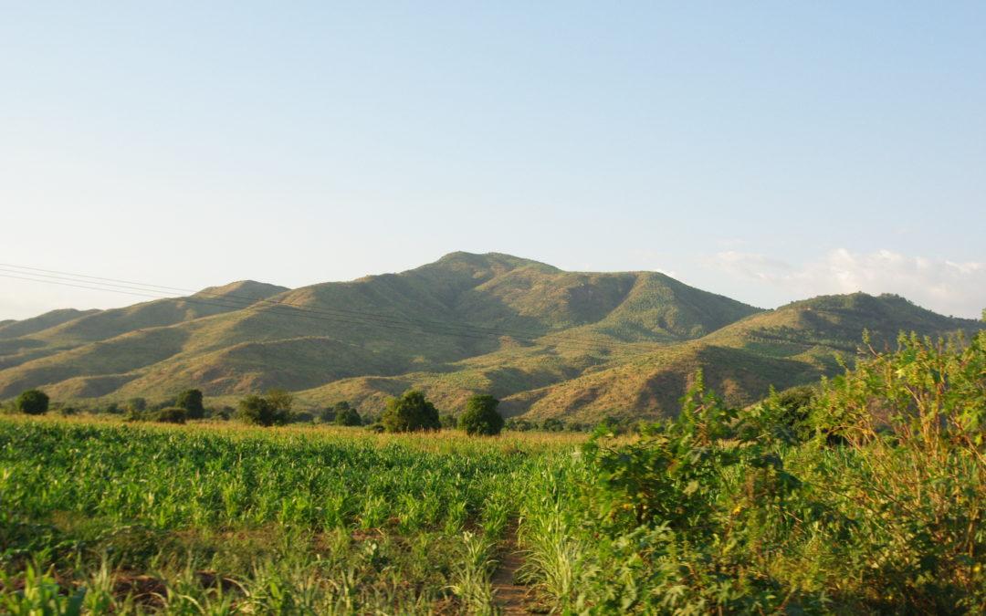Tithandizane: Diwa Baptist